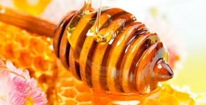 honey, market, profitable, key, brands, category, grow, Checkout.ie, Ranking, Top 100, status, health, product, digestive, problems, sore, throats, coughs, Manuka, Boyne Valley, Capilano, Hedge's, Gales, private, label, share, branding, advertising, domestic Production, art, beekeeping, popular, beekeepers, tonnes, domestic demand, €90m, imported, Irish Preferences, Implications, Food Economics Department, UCC, pay, premium, thick texture, dark, golden, colour, scale, basis, Manufacturers, jars, bottles, hue, Packaging, artisanship, future, growth, marketing, initiatives, sponsoring, cooking, shows, brand, ambassadors, celebrity, chefs, balanced, diet